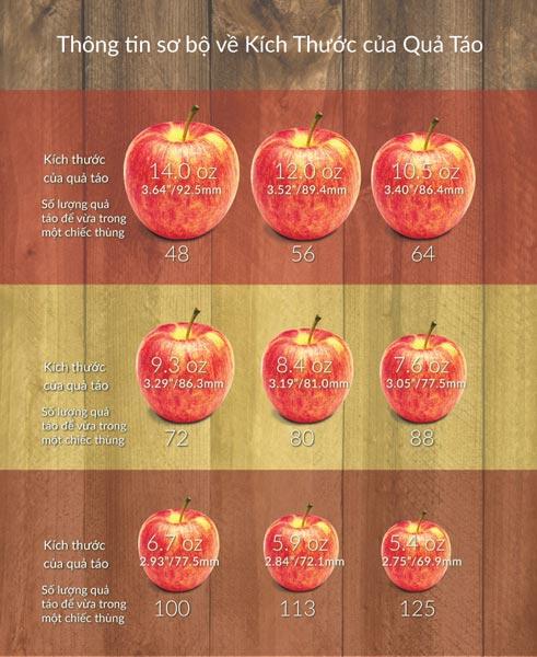Các kích thước quả táo theo quy chuẩn của washington