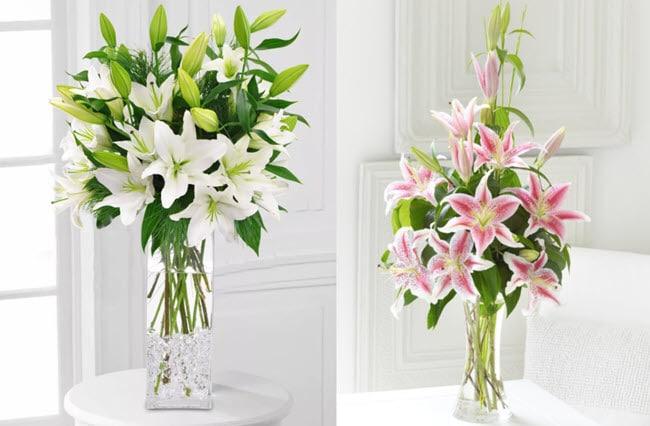 hoa cho ngày quốc tế phụ nữ