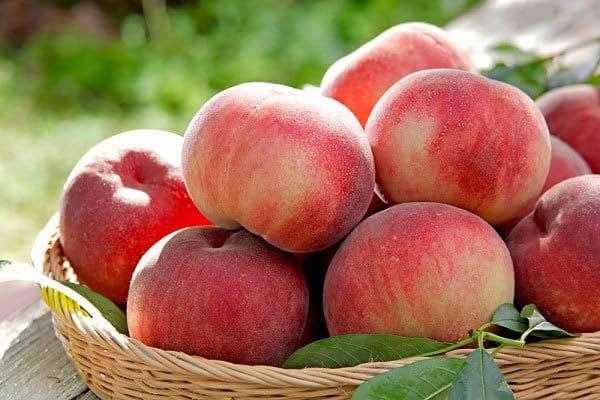quả đào là loại trái cây ít đường